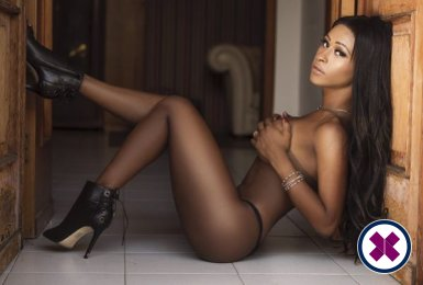 Meet the beautiful TS Soraya in London  with just one phone call