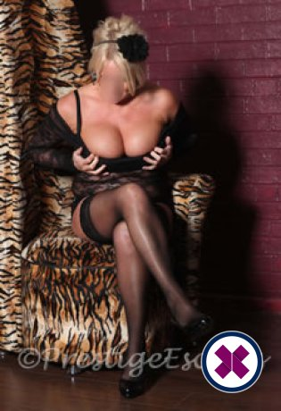 Stacy is a high class British Escort Newcastle