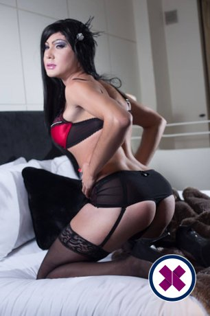 Book a meeting with TV Zara in London today