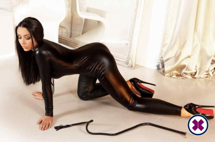 Linda  is a hot and horny Dutch Escort from Amsterdam