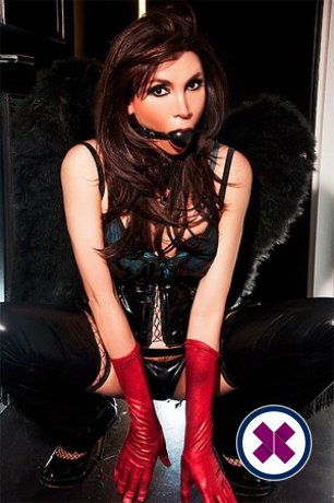 TS Annita XXL is a very popular Brazilian Escort in Westminster