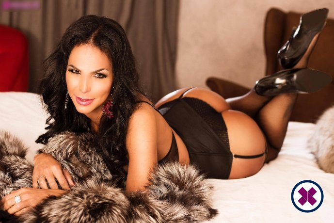 TS Luana's Happy Massage is one of the much loved massage providers in Westminster. Ring up and make a booking right away.