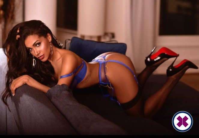 Jenny is a super sexy Brazilian Escort in Royal Borough of Kensington and Chelsea