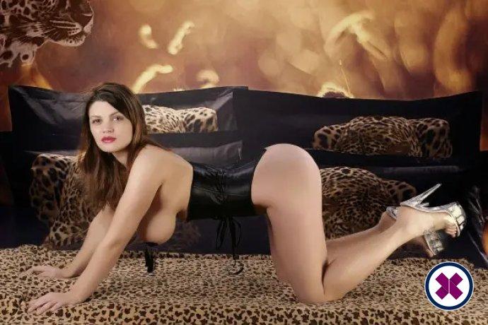 Alina ist eine sexy Dutch Escort in Amsterdam