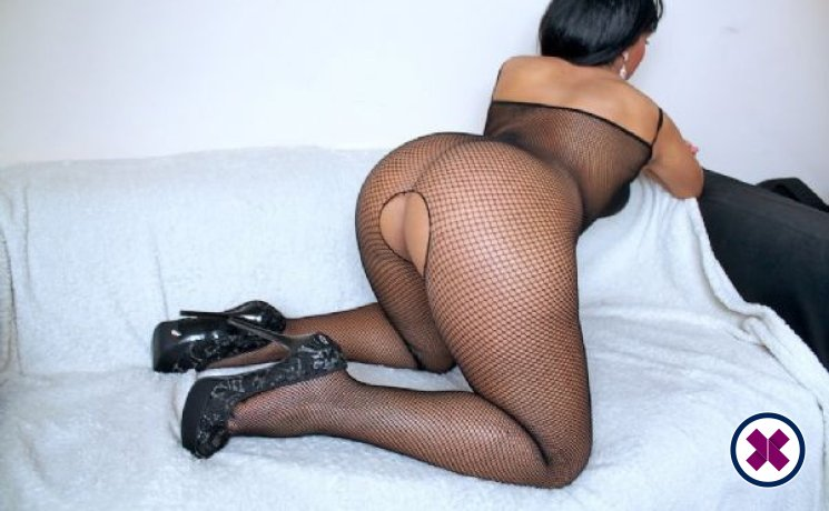 Layla is a sexy English Escort in Westminster